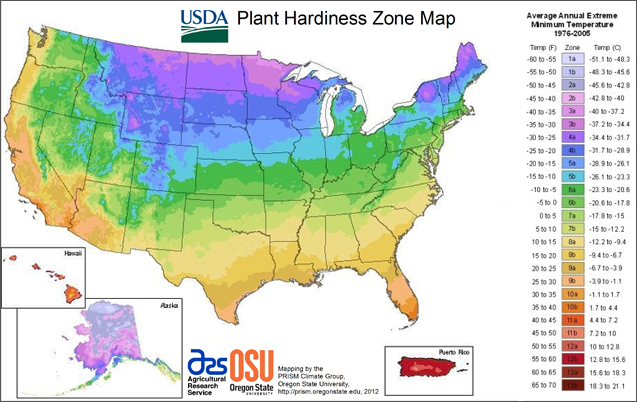 USDA zone map
